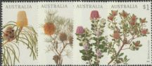 AUS SG4855-8 Banksias set of 4